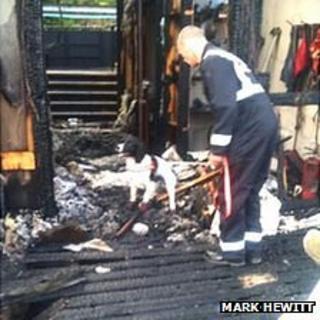 Fire service dog Nelson examining scene. Pic: Mark Hewitt