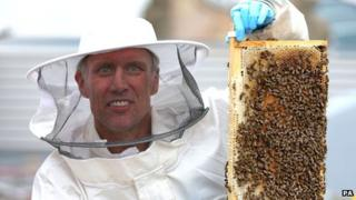Bez with bees