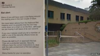 Southampton Crown Court and 'bat alert' notice