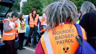 Wounded Badger Patrol gathering