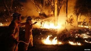 Fire fighters tackle wildfire