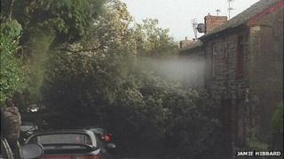 A fallen tree blocked Park Street in Bridgend