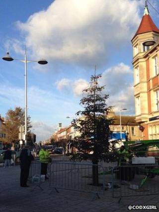 Christmas tree 'twig' in Clacton