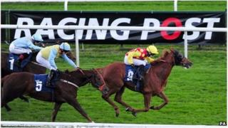 Racing Post racecourse board and horses