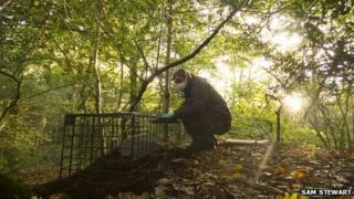 Dorset Wildlife Trust vaccination project