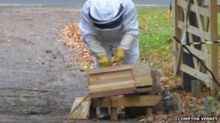 Beekeeper looking at damaged hive