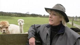 Dianne Summers and alpacas
