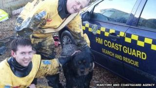 Buddy with rescuers Roly Warmington (back) and Alex Benfield