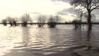 Flooded land on the Somerset Levels
