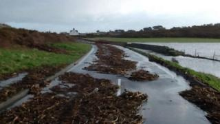 Coast road at L'eree, Guernsey, 2 Feb 2014