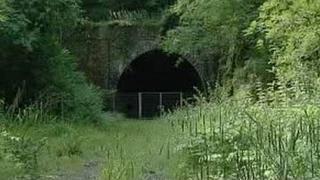 Shillamill Tunnel, near Tavistock