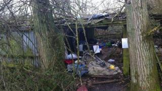 Pigsty in Wisbech where people were living