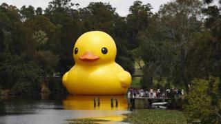 The giant inflatable Rubber Duck installation by Dutch artist Florentijn Hofman floats on the Parramatta River, as part of the 2014 Sydney Festival