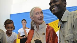 Primatologist Jane Goodall meets supporters at an event in Nairobi, Kenya, on 26 January.