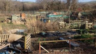 Penparcau allotments