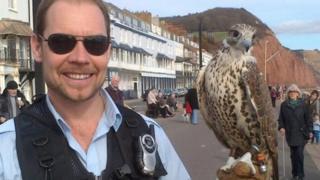 Jonathan Marshall and one of his falcons