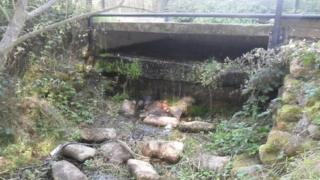 The Madebrook
