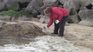 Caroline Costa takes a sand sample