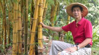 Chen Ching-fu, general manager of the Bamboo Culture Park