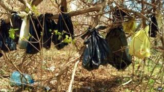 A handout photo from the Westchester SPCA shows bags with the remains of cats in the woods in Yonkers