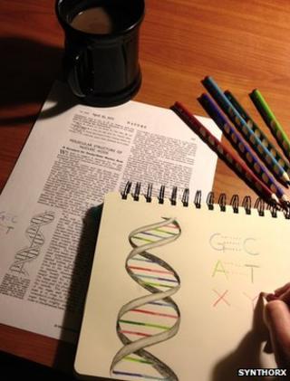 Artist illustration of DNA
