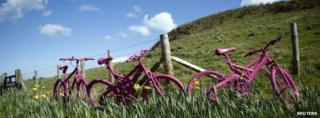 Pink bicycles in a field near the village of Ballintoy