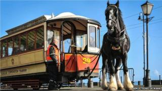 Horse and tram on the Isle of Man