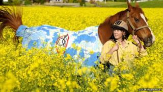 Horse artwork