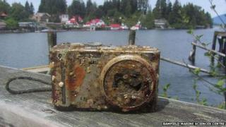 Camera lost off Vancouver Island, in Canada, in 2012 and found two years later