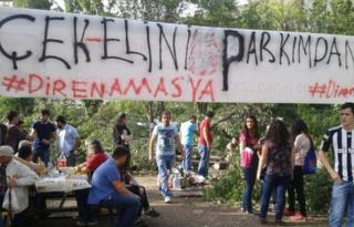 Protestors gathered at the park in Amasya