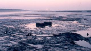 Wood circle at Holme-next-the-Sea
