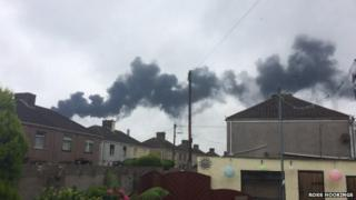 Smoke emitted from the plant
