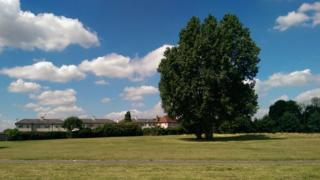 Part of Osmaston Park, on which homes could be built