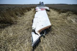 Wreckage from Flight MH17 in a field in east Ukraine, 23 July