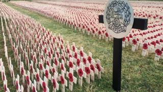 Field of Remembrance in Winchester