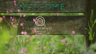 Welcome to The National Forest sign