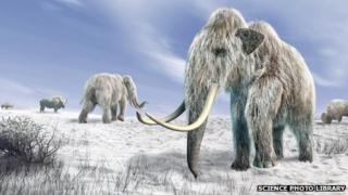 Computer artwork of woolly mammoths