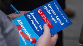 A woman holds a leaflet by AfD in canvassing on 25 August 2014