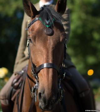 Galaxy ridden by Capt Nick Watson of the Kings Troop, Royal Horse Artillery receives the Honorary PDSA Dickin Medal on behalf of WWI war horse Warrior