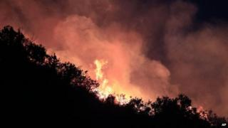 A forest fire burns in Valparaiso, Chile on 14 March, 2015