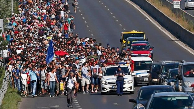 Hundreds of migrants walk along the motorway in Budapest (4 September)