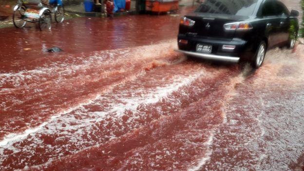 После праздника Курбан-байрам улицы столицы Бангладеша затопила вода скровью