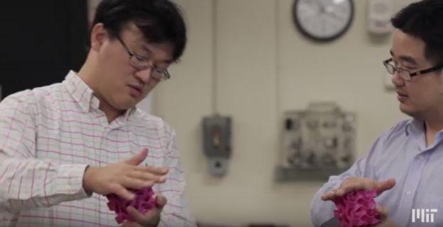 Cientistas do MIT (EUA)