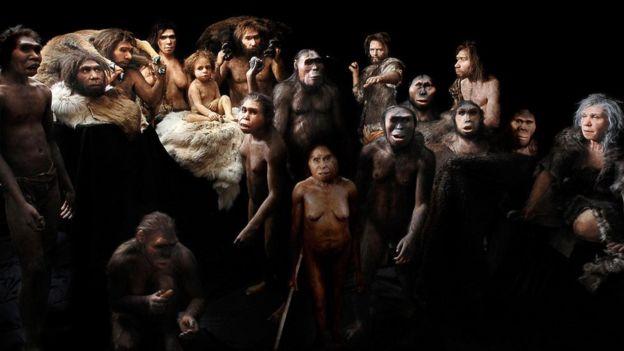 homininler