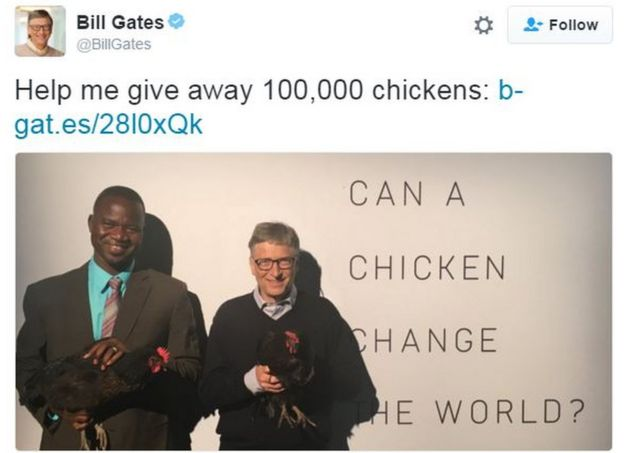 Can A Chicken Change The World?