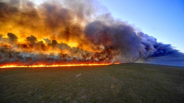 Fuego descontrolado en la selva