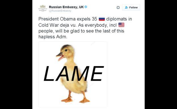 Imagen de un pato con la palabra