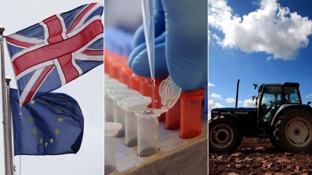 歐盟資助英國的項目