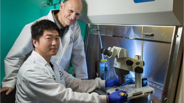 Los investigadores Jun Wu y Juan Carlos Izpisua Belmonte, del Salk Institute