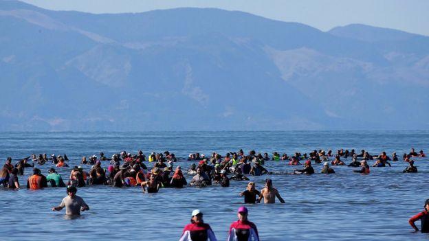 Decenas de voluntarios sumergidos hasta la cintura en el agua